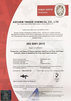 ISO Certificate of Registration Example 3
