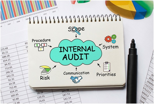 Internal audit elements